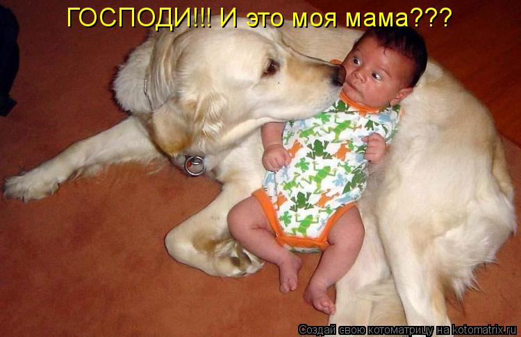 Котоматрица: ГОСПОДИ!!! И это моя мама???