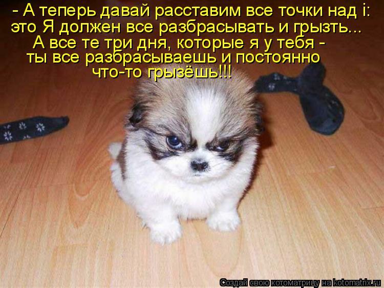 Котоматриця!)))) - Страница 3 895370