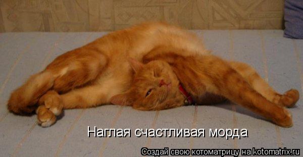 http://kotomatrix.ru/images/lolz/2011/04/28/895485.jpg