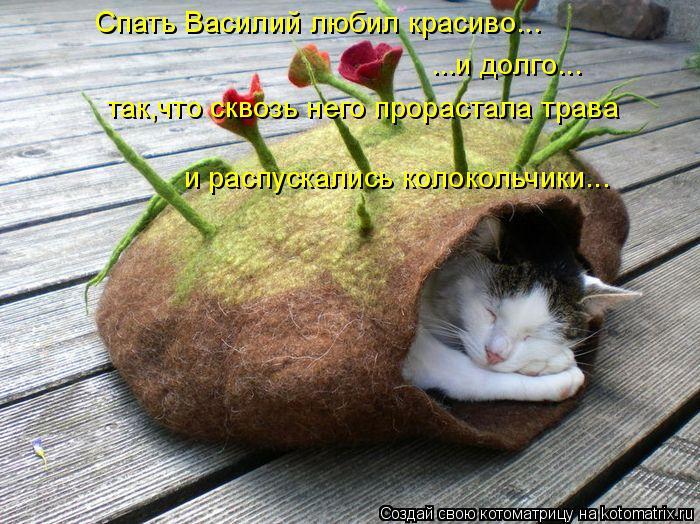 Котоматрица: Спать Василий любил красиво... ...и долго... так,что сквозь него прорастала трава  и распускались колокольчики...