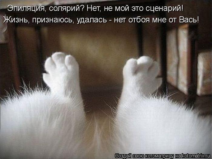 Котоматриця!)))) - Страница 3 895933
