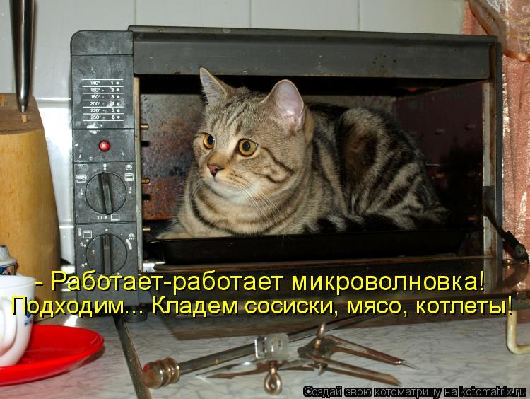Котоматриця!)))) - Страница 3 895987