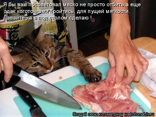 Котоматрица: Я бы вам посоветовал мяско не просто отбить,а еще эдак коготочками пройтись, для пущей мягкости. Давайте-ка я под столом сделаю !