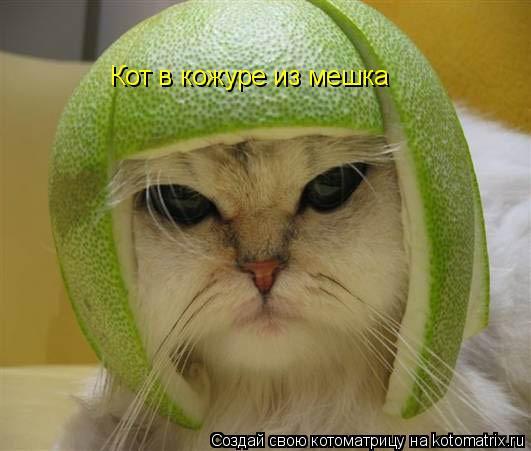 Котоматрица: Кот в кожуре из мешка