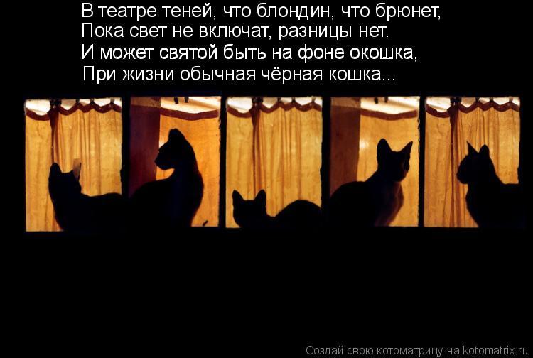 Котоматрица: В театре теней, что блондин, что брюнет, Пока свет не включат, разницы нет. И может святой быть на фоне окошка, И может святой быть на фоне око