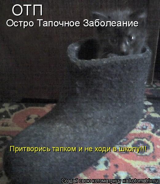 Котоматрица: ОТП Остро Тапочное Заболеание Притворись тапком и не ходи в школу!!!