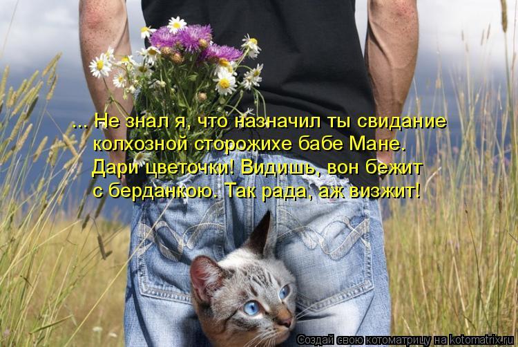 Котоматрица: ... Не знал я, что назначил ты свидание   колхозной сторожихе бабе Мане.  Дари цветочки! Видишь, вон бежит  с берданкою. Так рада, аж визжит!