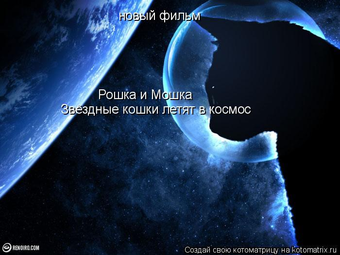 Котоматрица: новый фильм Рошка и Мошка Звёздные кошки летят в космос