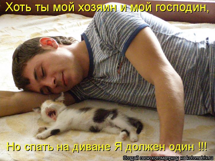 Котоматрица: Хоть ты мой хозяин и мой господин, Но спать на диване Я должен один !!!