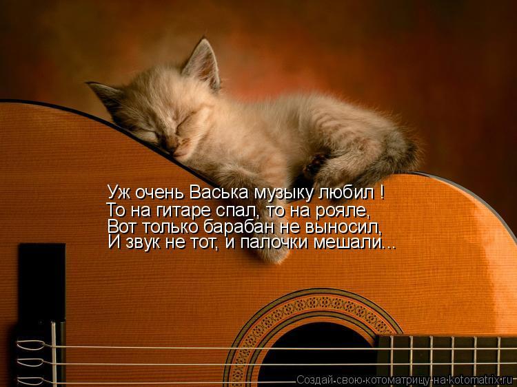 Котоматрица: Уж очень Васька музыку любил !  То на гитаре спал, то на рояле, Вот только барабан не выносил, И звук не тот, и палочки мешали...