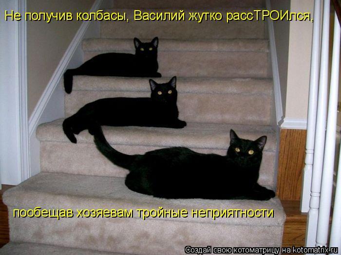 Котоматрица: Не получив колбасы, Василий жутко рассТРОИлся,  пообещав хозяевам тройные неприятности