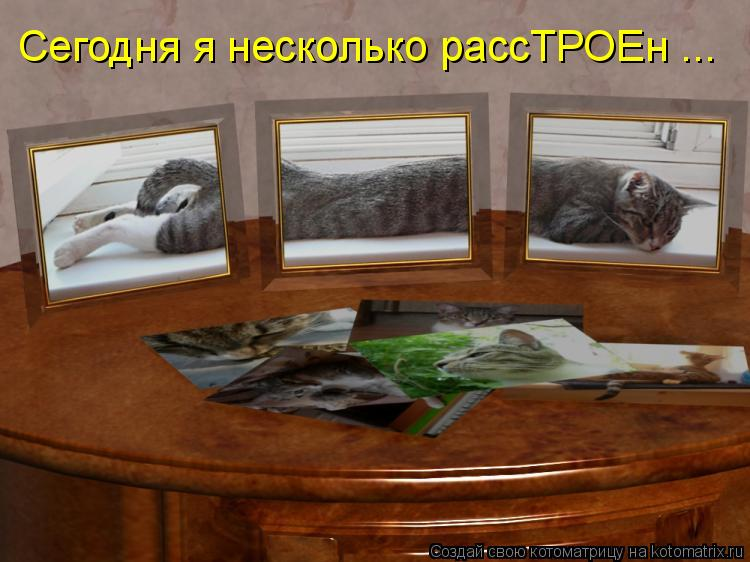 http://kotomatrix.ru/images/lolz/2011/05/04/900305.jpg