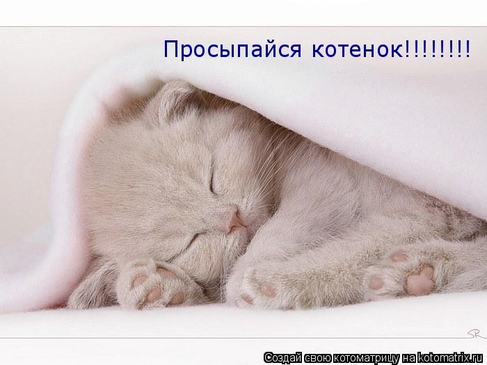картинки любимый просыпайся