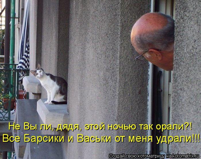 Котоматрица: Не Вы ли, дядя, этой ночью так орали?! Все Барсики и Васьки от меня удрали!!!