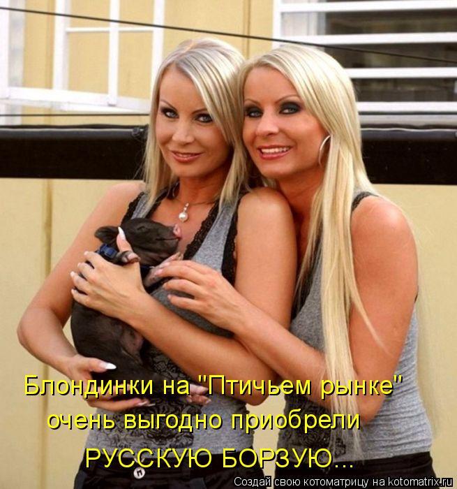 """Котоматрица: Блондинки на """"Птичьем рынке"""" очень выгодно приобрели РУССКУЮ БОРЗУЮ..."""