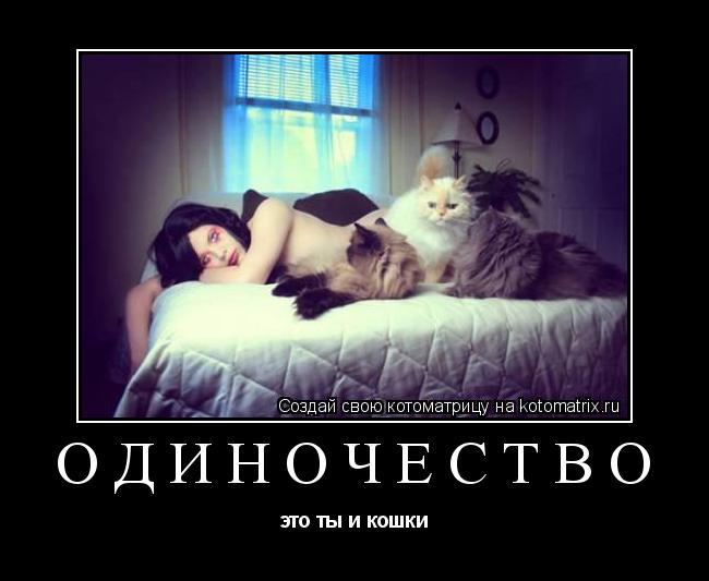 Котоматрица: одиночество это ты и кошки