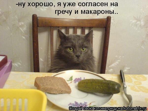 Котоматрица: -ну хорошо, я уже согласен на  гречу и макароны..