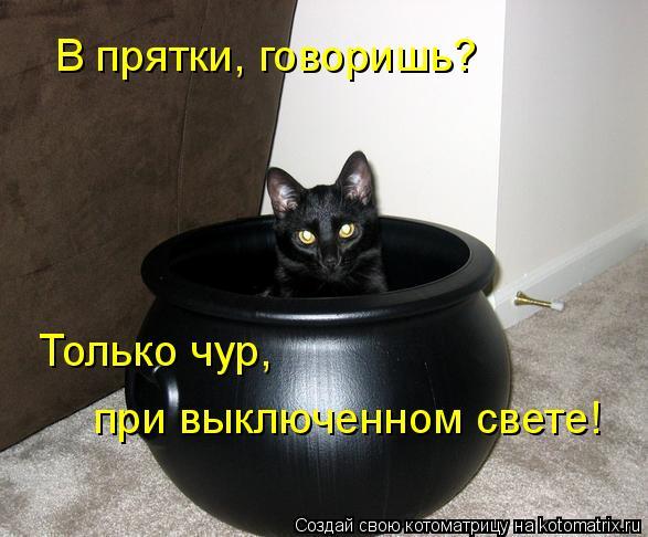 Котоматрица: В прятки, говоришь? Только чур, при выключенном свете!