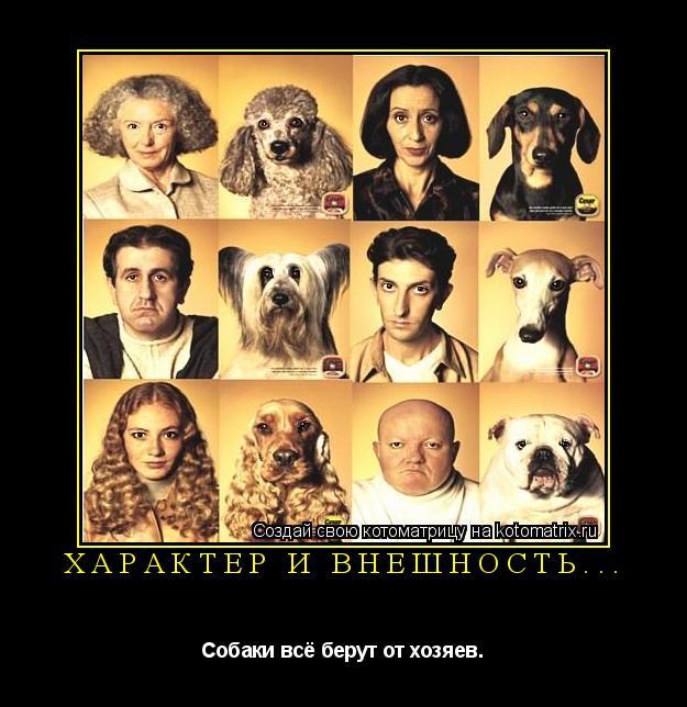 Котоматрица: Характер и внешность... Собаки всё берут от хозяев.