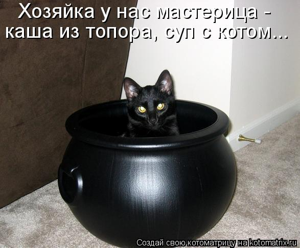 Котоматрица - Хозяйка у нас мастерица - каша из топора, суп с котом...