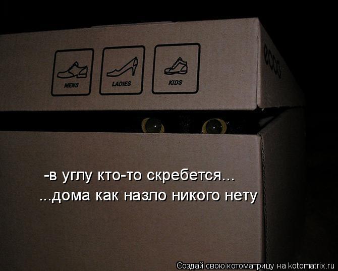 Котоматрица - -в углу кто-то скребется... ...дома как назло никого нету