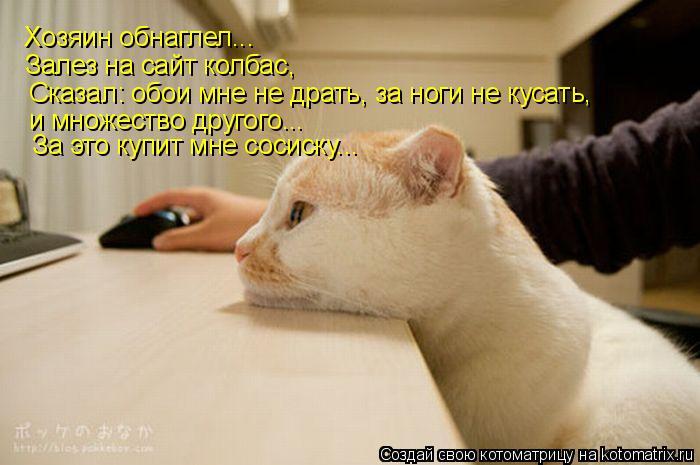 Котоматрица: Хозяин обнаглел... Залез на сайт колбас, Сказал: обои мне не драть, за ноги не кусать,  и множество другого... За это купит мне сосиску...