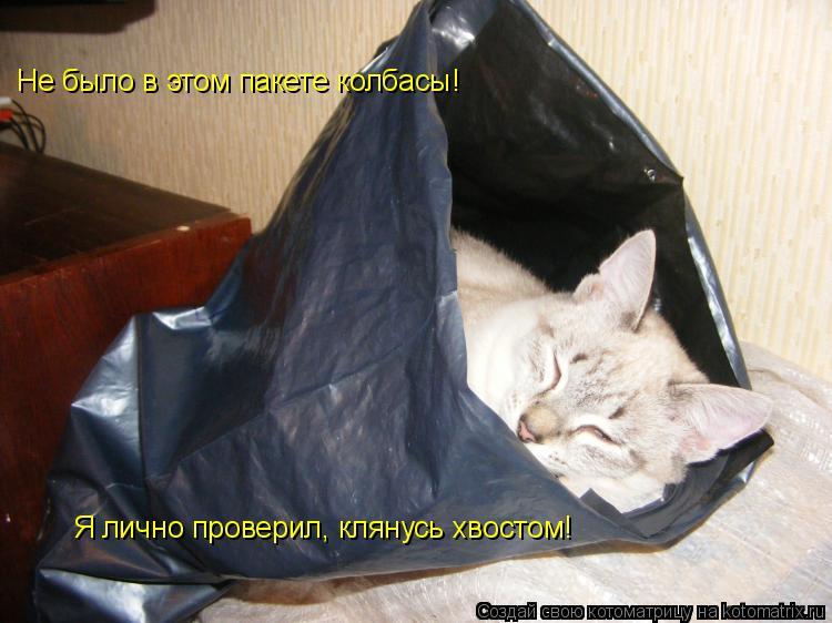Котоматрица: Не было в этом пакете колбасы! Я лично проверил, клянусь хвостом!