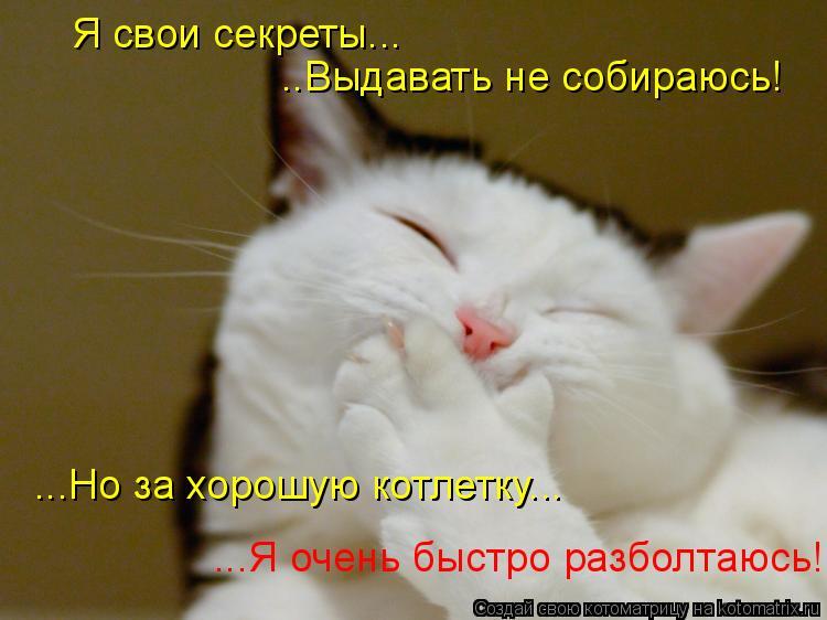 Котоматрица: Я свои секреты... ..Выдавать не собираюсь! ...Но за хорошую котлетку... ...Я очень быстро разболтаюсь!