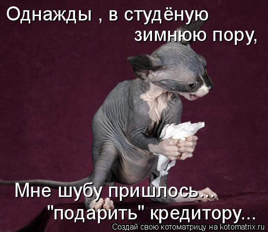"""Котоматрица: Однажды , в студёную   зимнюю пору,   Мне шубу пришлось... """"подарить"""" кредитору..."""