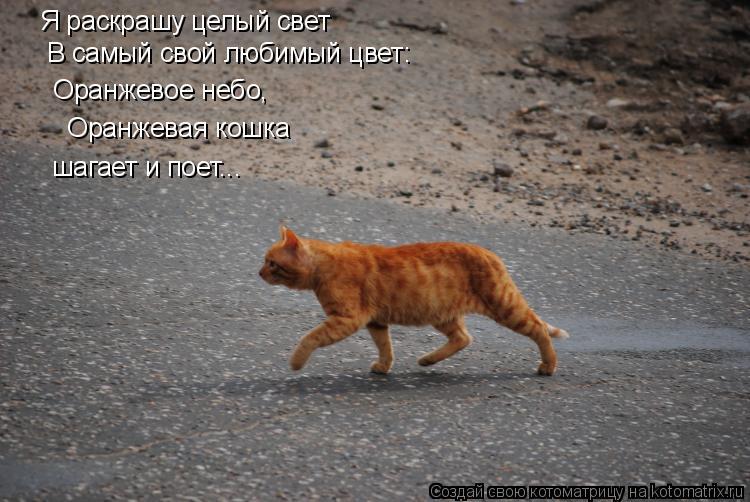 Котоматрица: Я раскрашу целый свет  В самый свой любимый цвет:  Оранжевое небо,  Оранжевая кошка шагает и поет...