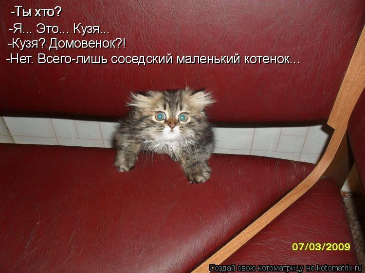Котоматрица: -Ты хто? -Ты хто? -Я... Это... Кузя... -Кузя? Домовенок?! -Нет. Всего-лишь соседский маленький котенок...