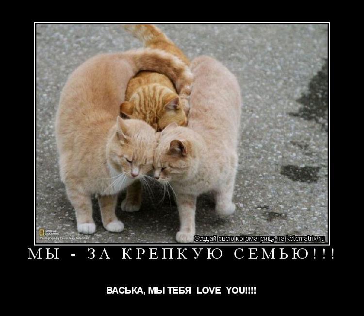 Котоматрица: МЫ - ЗА КРЕПКУЮ СЕМЬЮ!!! ВАСЬКА, МЫ ТЕБЯ  LOVE  YOU!!!!