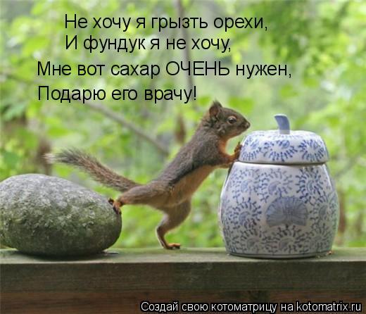 Котоматрица: Не хочу я грызть орехи, И фундук я не хочу, Мне вот сахар ОЧЕНЬ нужен, Подарю его врачу!