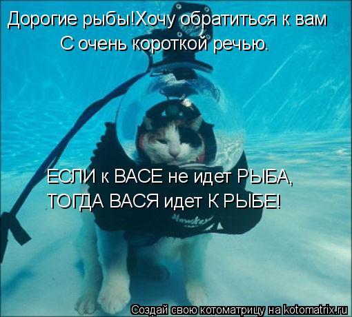 Котоматрица: Дорогие рыбы!Хочу обратиться к вам С очень короткой речью. ЕСЛИ к ВАСЕ не идет РЫБА, ТОГДА ВАСЯ идет К РЫБЕ!