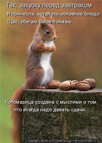 Котоматрица: Так, закуску перед завтраком Я принесла, осталось основное блюдо Щас, сбегаю Васю поймаю. Котомарица создана с мыслями о том, Что всегда над