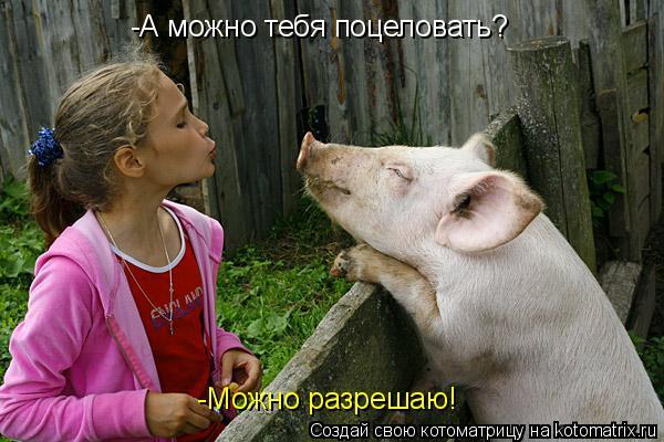 Котоматрица: -А можно тебя поцеловать? -Можно разрешаю!