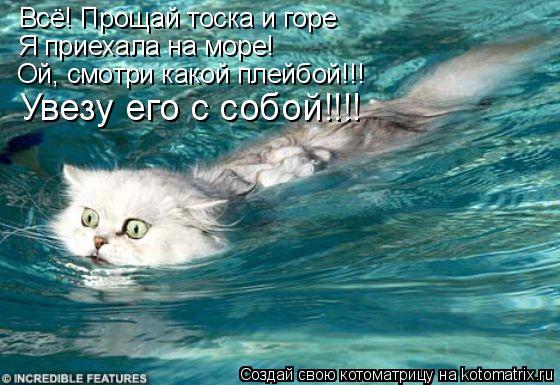 Котоматрица: Всё! Прощай тоска и горе Я приехала на море! Ой, смотри какой плейбой!!! Увезу его с собой!!!!