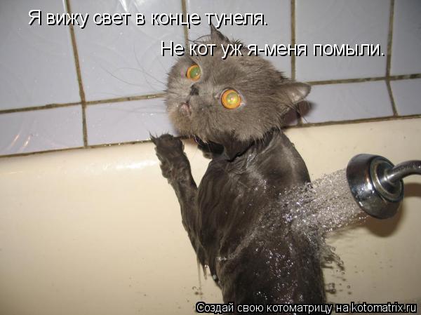 Котоматрица: Я вижу свет в конце тунеля. Не кот уж я-меня помыли.