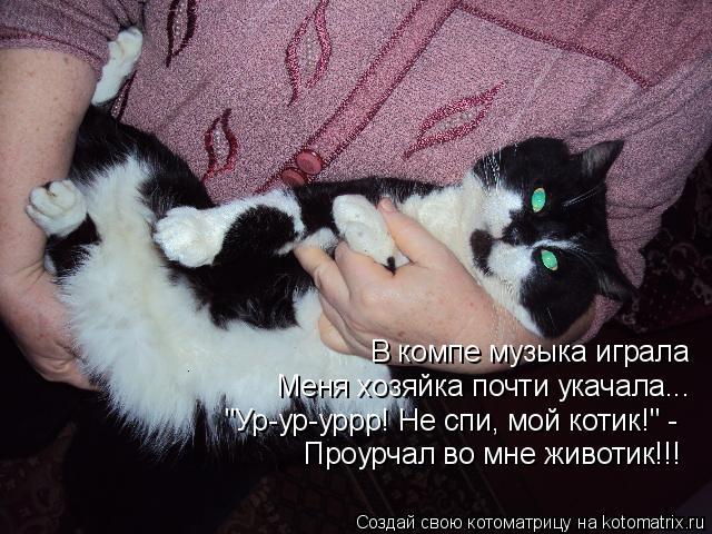 "Котоматрица: В компе музыка играла Меня хозяйка почти укачала... ""Ур-ур-уррр! Не спи, мой котик!"" - Проурчал во мне животик!!!"