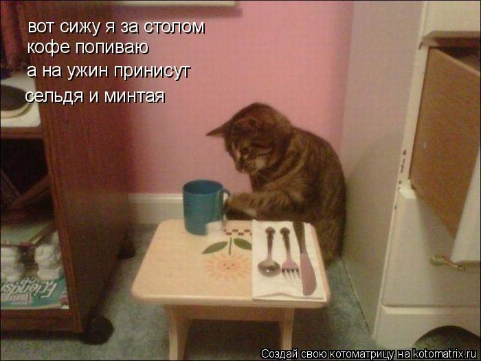 Котоматрица: вот сижу я за столом кофе попиваю а на ужин принисут сельдя и минтая