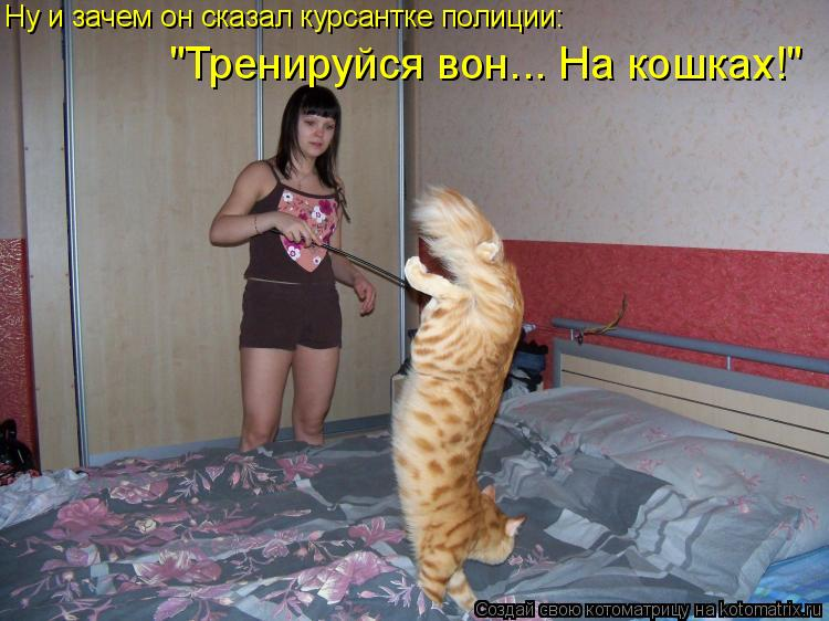 """Котоматрица: Ну и зачем он сказал курсантке полиции: """"Тренируйся вон... На кошках!"""""""