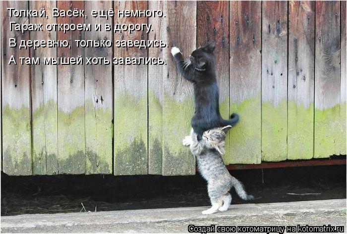 Котоматрица: Толкай, Васёк, ещё немного. Гараж откроем и в дорогу. В деревню, только заведись. А там мышей хоть завались.