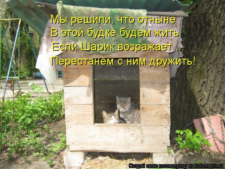 Котоматрица: Мы решили, что отныне  В этой будке будем жить. Если Шарик возражает ... Перестанем с ним дружить!