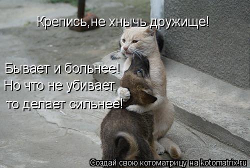 http://kotomatrix.ru/images/lolz/2011/05/12/905595.jpg