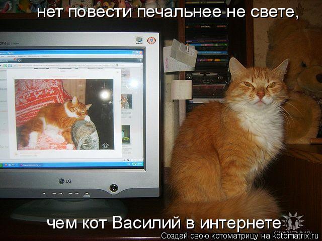 Котоматрица: нет повести печальнее не свете, чем кот Василий в интернете