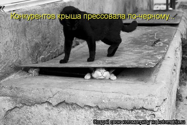 http://kotomatrix.ru/images/lolz/2011/05/12/905769.jpg