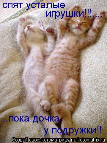 Котоматрица: спят усталые  игрушки!!!,... ..пока дочка  у подружки!!