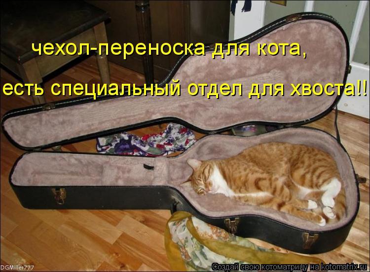 Котоматрица: чехол-переноска для кота, есть специальный отдел для хвоста!!