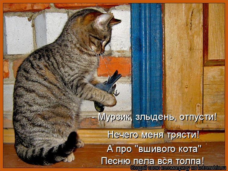 """Котоматрица: - Мурзик, злыдень, отпусти!  Нечего меня трясти!  А про """"вшивого кота"""" Песню пела вся толпа!"""
