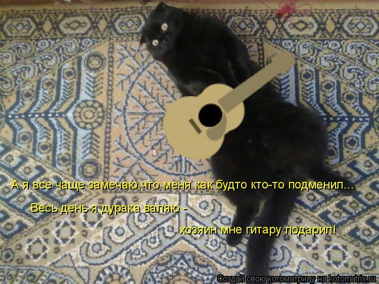 Котоматрица: А я все чаще замечаю,что меня как будто кто-то подменил... Весь день я дурака валяю -  хозяин мне гитару подарил!